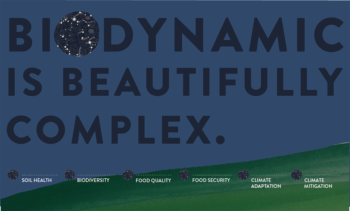 Biodynamic infographic